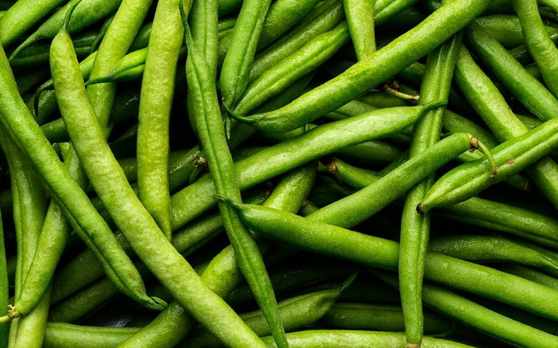 Can Dogs Eat String Beans