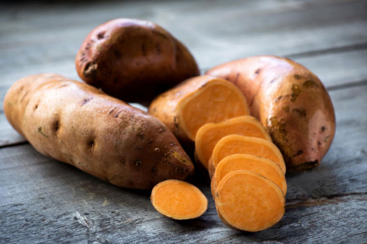 Sweet Potatoes Are Good For Dogs