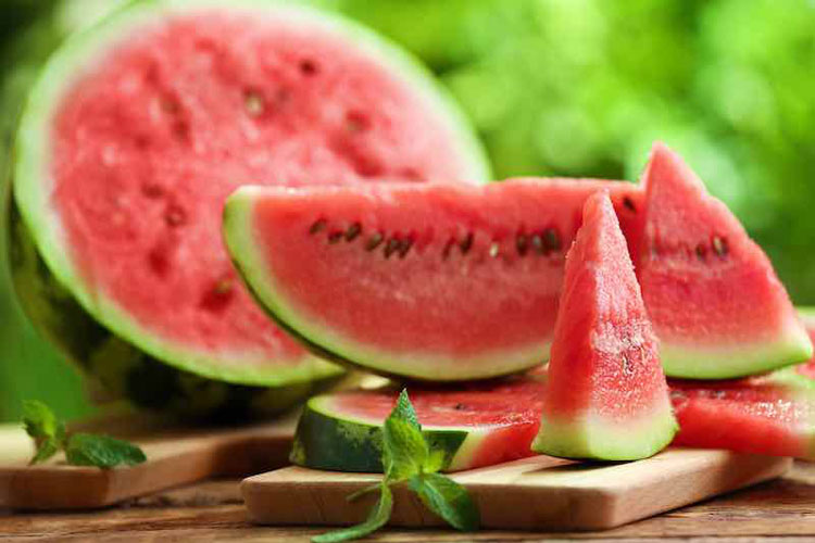 Dogs Can Eat Watermelon